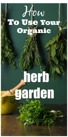 Herbalist, Kami McBride talks about how to turn your organic herb garden into your home apothecary. Simple and easy to use herbal remedies for you and your family