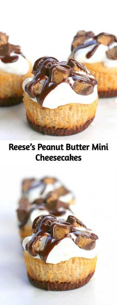 These Reese's Peanut Butter Mini Cheesecakes are so easy! The crust is made from a full size Reese's peanut butter cup. These Reese's Peanut Butter Mini Cheesecakes are so easy! The crust is made from a full size Reese's peanut butter cup. Mini Cheesecake Recipes, Pumpkin Cheesecake, Mini Desserts, Just Desserts, Delicious Desserts, Dessert Recipes, Chocolate Cheesecake, Amaretto Cheesecake, Turtle Cheesecake