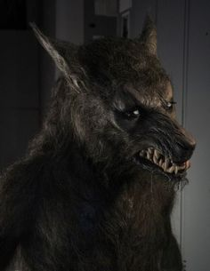 Werewolf from The Howling: Reborn