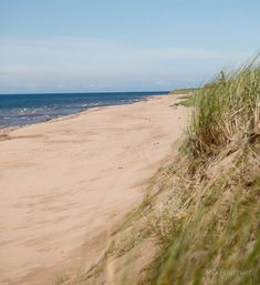 Prince Edward Island, Waves, Canada, Change, Explore, Beach, Outdoor, Instagram, Outdoors