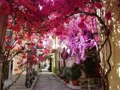Santorini, Mykonos & Corfu rank among the most popular romantic places in Greece but don't forget to pay a visit to the rest of the Greek Island >> Beautiful Streets, Beautiful World, Beautiful Places, Beautiful Pictures, Amazing Photos, Wonderful Places, Places To Travel, Places To Visit, Corfu Town