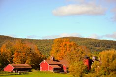 Barns in Kent Connecticut #1 Place for Fall Foliage in New England