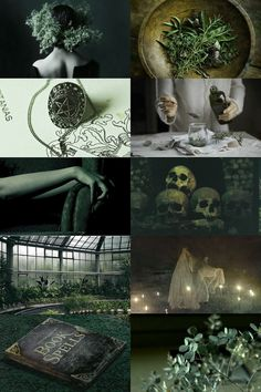 """skcgsra: """" green witch aesthetic """""""