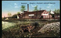 Dombóvár; Hungária a Dombóvári vajtermelő központja, 1914.