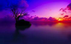Pinkish Sunset HD desktop wallpaper Fullscreen Mobile Dual