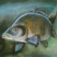 #fish #ryba #karp #pastel #drawing #art
