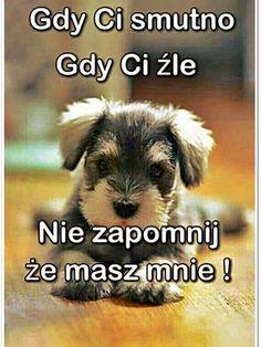 Weekend Humor, Love Always, Man Humor, Motto, Animals And Pets, Good Morning, Nostalgia, Jokes, Clip Art