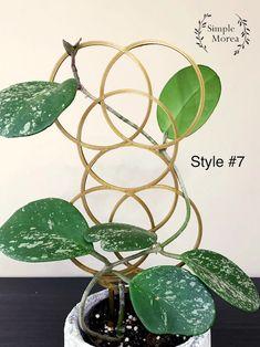 Gold Circle Trellis Style 7 | Etsy Types Of Plastics, Trellis, Accent Pieces, House Plants, 3d Printing, Plant Leaves, Planting Plants, Pretty, Gold