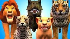 Animal Finger Family | Finger Family Song | 3D Animation Nursery Rhymes ...