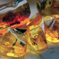 Amber or 'oriental' is one of the oldest scents out there. It encompasses a lot of familiar smells like vanilla. It is a classic base note and compliments a lot of other scents.