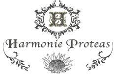 Harmonie Wedding Venues, This Is Us, Weddings, Decor, Wedding Reception Venues, Wedding Places, Decoration, Wedding, Decorating