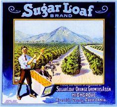 Highgrove CA,   Sugar Loaf Brand fruit crate label