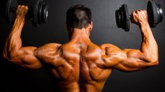 Discover The Secrets In The Best Bodybuilding Supplements, Workouts, diets, Tips, Training And How To Fuel Your Muscles, The Most Effective Way.