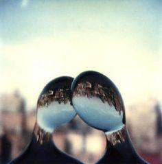 andre kertesz polaroid / Fine Art