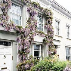 London in spring Não aguento as flores londrinas, tão tão lindas!  Vic Ceridono   Dia de Beauté