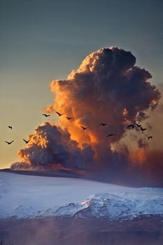 Birds fly across the face of the volcanic ash cloud in Norway. Photographer Snorri Gunnarsson