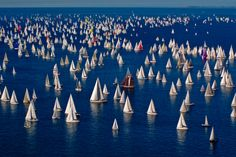 That's a whole lotta boats, and they're all on the same point of sail. It's not too windy; there are some headsails out that are 150s and a few that might be a-sails. It looks like a race, but that's too many boats. My clue: Barcolana di Trieste, led me to the description: the classic race, well-known dispute of sailing, is held every October in the Gulf of Trieste.