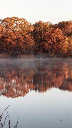 autumn, fall, and nature image The Last Summer, Autumn Scenery, Lovely Smile, Autumn Cozy, Autumn Aesthetic, Fall Wallpaper, Autumn Photography, Hello Autumn, Autumn Inspiration