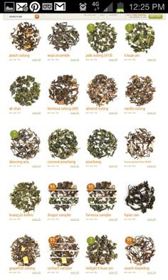 Ooblong tea varieties