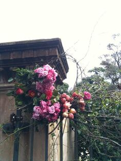 Grandiflora | www.grandiflora.net