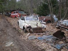 Mattie's tireshop consists of lots of beat up trucks and old, rusted car parts.