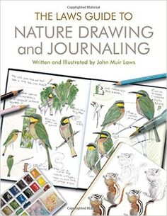 The Laws Guide to Nature Drawing and Journaling: Amazon.de: John Muir Laws: Fremdsprachige Bücher