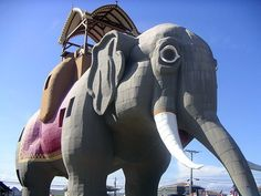 Lucy the Elephant in Margate, NJ is 65 feet tall and since 1882 has housed a bar, office, and summer home