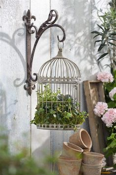 72 Stunning Birdcage Flower Planters - Balcony Decoration Ideas in Every Unique . - 72 Stunning Birdcage Flower Planters – Balcony Decoration Ideas in Every Unique Detail Source by aimeeleegee - Balcony Planters, Balcony Flowers, Flower Planters, Garden Planters, Garden Art, Garden Design, Birdcage Planter, Birdcage Decor, Container Herb Garden