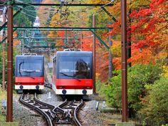「箱根登山ケーブルカー」の画像検索結果