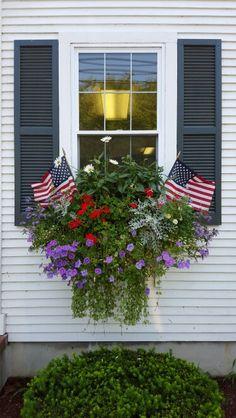 Patriotic Window Box at the Cape,  Chatham,  MA