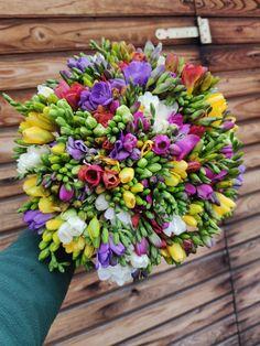 #frezii #freesia #spring #springaesthetic Spring Aesthetic, Magnolia, Magnolias