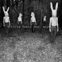 Creepy Hipster Tumblr | photography animals life creepy hipster camera animal forest unicorn ...