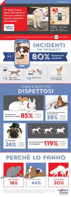 Animali domestici e smartphone, un rapporto difficile. I danni e come prevenirli