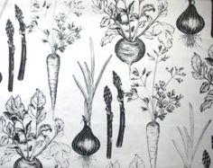 carrot illustration - Google Search