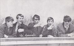 Vintage Postcard The Animals Rock Band Promo Billboard Photo R&B Newcastle Eric Burdon, Never Grow Old, Music Items, North East England, British Invasion, North Yorkshire, Newcastle, Rock Music, Billboard