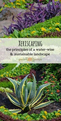 Xeriscaping: Gardening for Water Conservation Learn the principles of building a drought-tolerant and sustainable landscape design Modern Landscape Design, Landscape Plans, Garden Landscape Design, Flower Landscape, Spring Landscape, Contemporary Landscape, Watercolor Landscape, Landscape Paintings, Landscapes