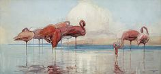 sydney long art | SYDNEY LONG - Flamingos
