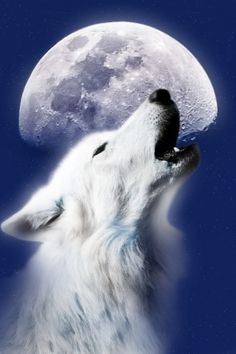 HOWL LIKE A WOLF OR A JAGGER.. WHICH ONE?