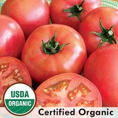 Tomato, Trucker's Favorite Pink Organic   Seed Savers Exchange