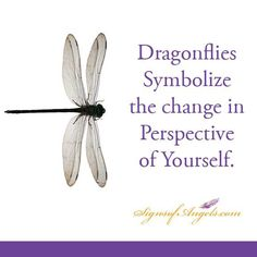 It is time to look at yourself with a new perspective.  How about through the eyes of your Angels?