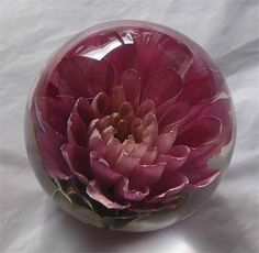 Flower Preservation Work In Somerset Wedding Floristched Co Uk Flowers