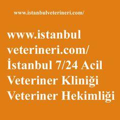 #veteriner #veterinerkliniği #acilveteriner