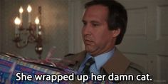 """The Griswolds From """"National Lampoon's Christmas Vacation"""" Christmas Vacation Meme, Christmas Movie Quotes, Vacation Movie, Best Christmas Movies, Vacation Humor, Christmas Humor, Christmas Time, Christmas Specials, Merry Christmas"""