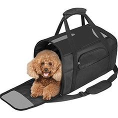 Great Screen dog kennel travel Strategies Many people which purchase out-of-doo. : Great Screen dog kennel travel Strategies Many people which purchase out-of-doors dog crates, have zero expertise on HOW TO KENNEL TRAIN Some sort of DOG. Portable Dog Kennels, Wooden Dog Kennels, Dog Kennel Cover, Diy Dog Kennel, Wood Dog House, Cat Crate, Pet Ramp, Big Dog Breeds, Wireless Dog Fence