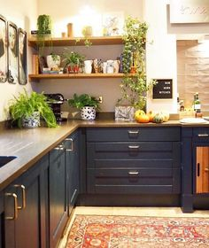 The fabulous mix and match of ideas are made here in the designing of this adorable rustic style idea. The place is beautifully ornamented with the rustic wooden texture added to this place with the addition of these DIY shelve designs. The appealing freshness of the plants is turning this kitchen an ideal design.
