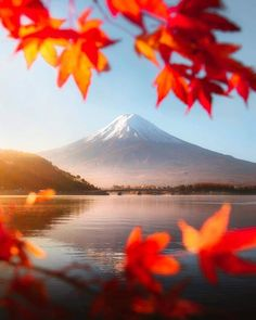 Pin By Virginia Simmons On Japan With Images Best Travel