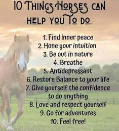 Horses Ability Finding Inner Peace, Love And Respect, Horse Stuff, Intuition, Confidence, Horses, Feelings, Life, Horse