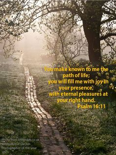 Psalm 16:11...The Path of Life