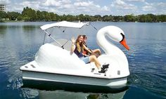 Groupon - One or Two 30-Minute Lake Eola Swan Boat Rentals (Up to 47% Off)  in South Eola. Groupon deal price: $9
