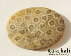 Fossil coral Cabochon Oval shape Grey cream  by KalaKaliGems, €34.00